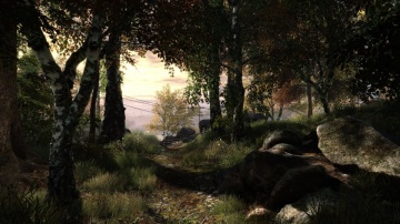 /products/The Vanishing of Ethan Carter/screen5_large.jpg