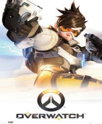 /products/overwatch-standard-edition/overwatch-standard-edition-battle-net-key.jpg